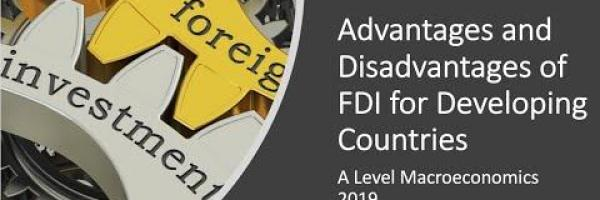 Embedded thumbnail for Is foreign direct investment (FDI) good for developing countries?
